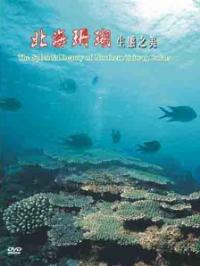 北海之珊瑚(已絕版,合併於舞動北海生命增訂版)