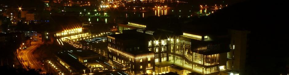 主題館區鳥瞰夜景(往八斗子漁港方向)